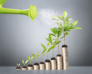 shutterstock 147014030 300x241 - Prevailing over the costs of rapid growth
